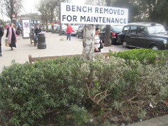 bench removed for maintenance